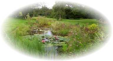 pond construction newent ross ledbury
